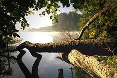 Schaalsee im Morgendunst Germany, River, Celestial, Outdoor, Sign, Road Trip Destinations, Hamburg, History, Outdoors