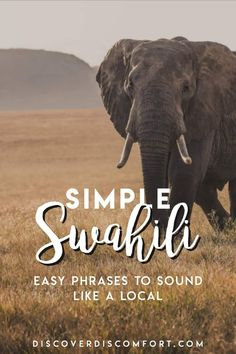 This is the Swahili that's not focused on in textbooks but which makes living in Tanzania or Kenya SO much easier. We learned this after two months in East Africa, learning Swahili, and are happy to pass this on to you. | language hacking | learn swahili | tanzania | kenya | east africa | language learning | Swahili tips | East Africa Travel | #languagelearning #languagetips #languagehack #learnswahili #discoverdiscomfort