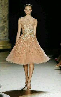 Paris Winter 2013: Elie Saab
