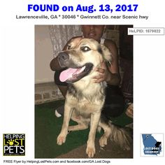 Do you know this Dog? #Lawrenceville (Scenic hwy)  #GA 30046 #Gwinnett Co.  #Dog 08-13-2017! Male #Shepherd Mix Black / Tan/  CONTACT Vmartinez2313@gmail.com  More Info Photos and to Contact: http://ift.tt/2fMykjS  To see this pets location on the HelpingLostPets Map: http://ift.tt/2i9k1Gz  Let's get this dog home! #lostdogsgeorgia  #HelpingLostPets