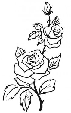 Details about Two Roses Outline Rose Flowers Wall Stickers Wall Art Decal Trans. - Details about Two Roses Outline Rose Flowers Wall Stickers Wall Art Decal Transfers - Rose Outline Tattoo, Rose Outline Drawing, Rose Drawing Simple, Flower Drawings, Outline Drawings, Rose Bud Tattoo, Beautiful Rose Drawing, Pencil Drawings, Rose Drawing Tattoo