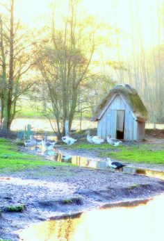 Little House Famous Artists, One Pic, Framed Prints, Birds, Landscape, House Styles, Places, Nature, Poster