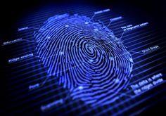 Synaptics announces turnkey USB-based fingerprint authentication dongle