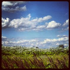 Instagram Picture of Farmland and Blue Skies