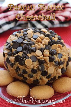 Want a quick and easy recipe to take to those summertime parties that's a little different but oh, so delicious? Try this Peanut Butter Cheeseball Recipe!!!