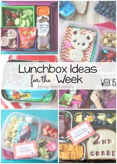 Rock The Lunchbox – School Lunchbox Ideas
