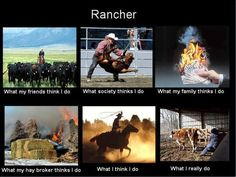 I've helped out on ranches... its a little of all of it lol