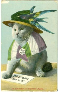 An Advocate for Women s Rights - Votes for Women - Dressed Cat Suffragette