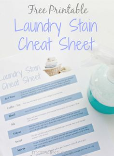Laundry Stain Remover Cheat Sheet ~ Free Printable at mom4real.com
