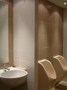 Photo Features Iron Jungle Tones And Pearl Solid X In A Grid - Commercial bathroom renovations