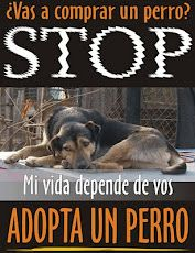 No compres, ADOPTA DE MANERA RESPONSABLE!!!!