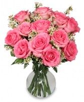 The light pink color of these roses look really nice. It seems like florists have found a way to grow roses in many different colors. It would be nice if there were roses that were more of a champagne color. Pink roses look lovely, but champagne would also look quite pretty.