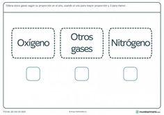 Ficha de proporción de gases para primaria