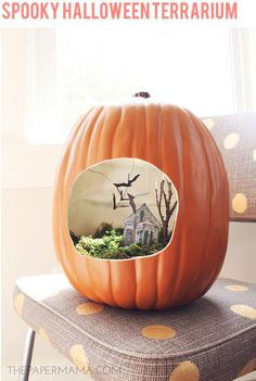 Spooky Halloween Terrarium by @Chelsey Boatwright Photography Boatwright Photography The Paper Mama #MPumpkins