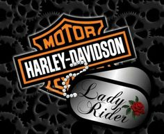 All Time Best Tricks: Harley Davidson Scrambler harley davidson fatboy.Harley Davidson Logotipo harley davidson old school posts. Harley Davidson Knucklehead, Harley Davidson Roadster, Harley Davidson Helmets, Harley Davidson Street, Harley Davidson Motorcycles, Harley Bikes, Harley Davidson Quotes, Harley Davidson Tattoos, Harley Davidson Wallpaper