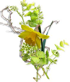 Květinové vazby « Rubrika | valin