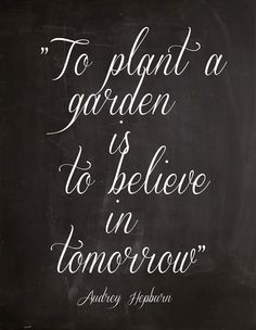 Believe In Tomorrow, And Your Flowers Will Come To Their Full Bloom. U003d)