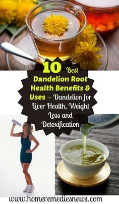 10 Best Dandelion Root #Health Benefits & Uses – #Dandelion For Liver, Weight Loss, And #Detoxification. While the dandelion is seen mostly as a weed, it's full of nutrients, vitamins, and minerals which makes it a healthy part of your diet. The dandelion root health benefits are considerable, so you should consider mixing it in a tea so you can enjoy what it offers #mineralshealth