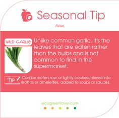 #Seasonal #FoodTips - Don't miss trying Wild #Garlic this month!  #April #food #cooking #abril #ajo #knoblauch #gemuese #temporada #kitchen