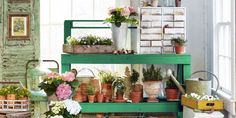 Garden Sheds - Gardening Supplies