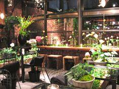 Aoyama Flower Market TEA HOUSE : +trip aroma tree+at seoul+