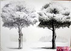 나무를 데생과 무채색 수채화로 표현했습니다~ 무성한 나무잎들을 큰덩어리로 표현하여 빛에 의한 양감을 ...