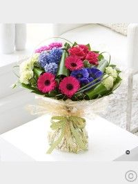 Offering something different, this Spring Brilliance Hand-tied features pink germini and blue hyacinths. Valentines Flowers, Mothers Day Flowers, Send Flowers, Cut Flowers, Spring Flowers, Best Flower Delivery, Flower Delivery Service, Online Flower Delivery, Blue Hyacinth