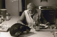 """Ernest Hemingway and his cat Many of his cats were Poly's and they became known as """"Hemingway Cats"""". Ernest Hemingway, Hemingway Cats, Crazy Cat Lady, Crazy Cats, Celebrities With Cats, Celebs, Men With Cats, Polydactyl Cat, Animal Gato"""