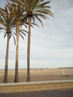 Tijdens het kijken naar onze vakantiefoto's bedacht ik mij dat ik jullie had beloofd om een blog te typen over onze hotspots in Valencia, so here it is! Ik ben heel benieuwd wat jij er van vind. En mocht je naar Valencia willen, je kunt mij altijd om tips vragen!