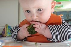 Ready to feed your baby something more than sweet potato mush and pureed peas? Jump…