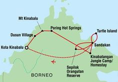 Image result for borneo malaysia