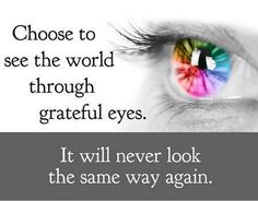 Choose to see the world through grateful eyes. It will never look the same way again... #quote #philosophy
