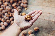 Pre svoju imunitu viete spraviť veľa - stačí za hrsť orechov, ktoré dodajú telu správne vitamíny! – obrázky   Vyšetrenie.sk