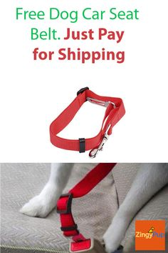 Claim your Dog Car Seat Belt for FREE NOW...  Just pay Shipping. Limited stock.  https://zingypup.com/products/free-dog-car-seat-belt-harness-restraint?utm_source=pinterest&utm_medium=promoted&utm_campaign=free-dog-car-belt&utm_content=ad1