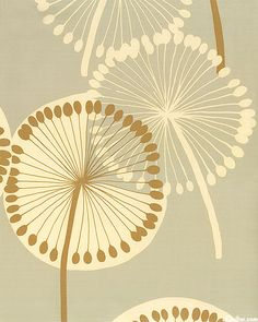 Dandy Lion - Serene Seed Pods from Alexander Henry