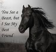 No horses are beasts! -:)