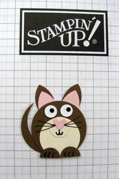 cat stage 8