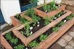 edible gardens boxes - Google Search