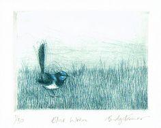 Bridget Farmer | Blue Wren