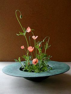 Ikebana - by Atsushi Ikebana Arrangements, Ikebana Flower Arrangement, Modern Flower Arrangements, Flower Vases, Flower Art, Cactus Flower, Exotic Flowers, Beautiful Flowers, Purple Flowers