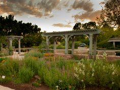 Darlene Radichel Plant Select Garden | Denver Botanic Gardens