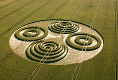 In 2006, several crop circles appeared, realized according to the same theme, with two juxtaposed . http://www.crop-circles.eu/pages/etres_intelligents_agroglyphes.php?lang=en