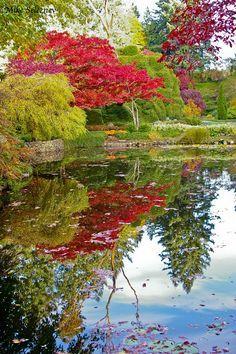 Japanese garden - Victoria, British Columbia #exploreBC from Takashi Imaoka