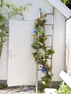 Bloemenslinger aan de trap