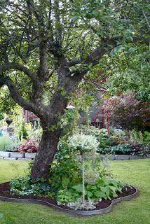 It's a house Garden Borders, Garden Paths, Landscape Design, Garden Design, Scandinavian Garden, Garden Gadgets, Patio Deck Designs, Garden Inspiration, Backyard Landscaping
