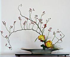 SONY DSC - bunga