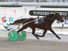 YONKERS, NY, Sunday, January 11, 2015-Yonkers Raceway's first French-exported program of the season went postward Sunday afternoon. The first seve&hellip