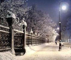 quiet winter lane
