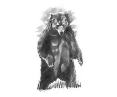 Black Bear Tattoo Design