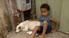 Jornal Nacional - Cadelinha salva vida de menino e vira heroína em Minas Gerais